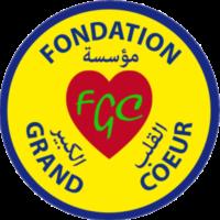 Tchad-LOGO-fondation-grand-coeur